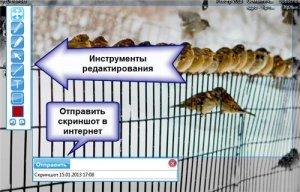 Передать скриншот через интернет