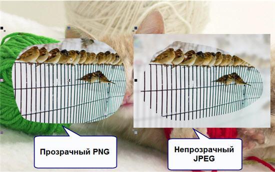 Непрозрачный JPEG и прозрачный PNG
