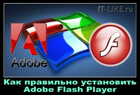 Как установить Adobe Flash Player на компьютере