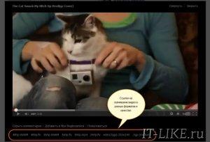 Как скачать видео ВКонтакте